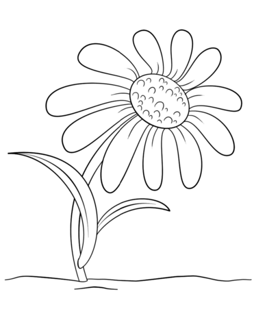 Cartoon Daisy Flower Coloring Page Flower Coloring Pages Daisy Art Coloring Pages