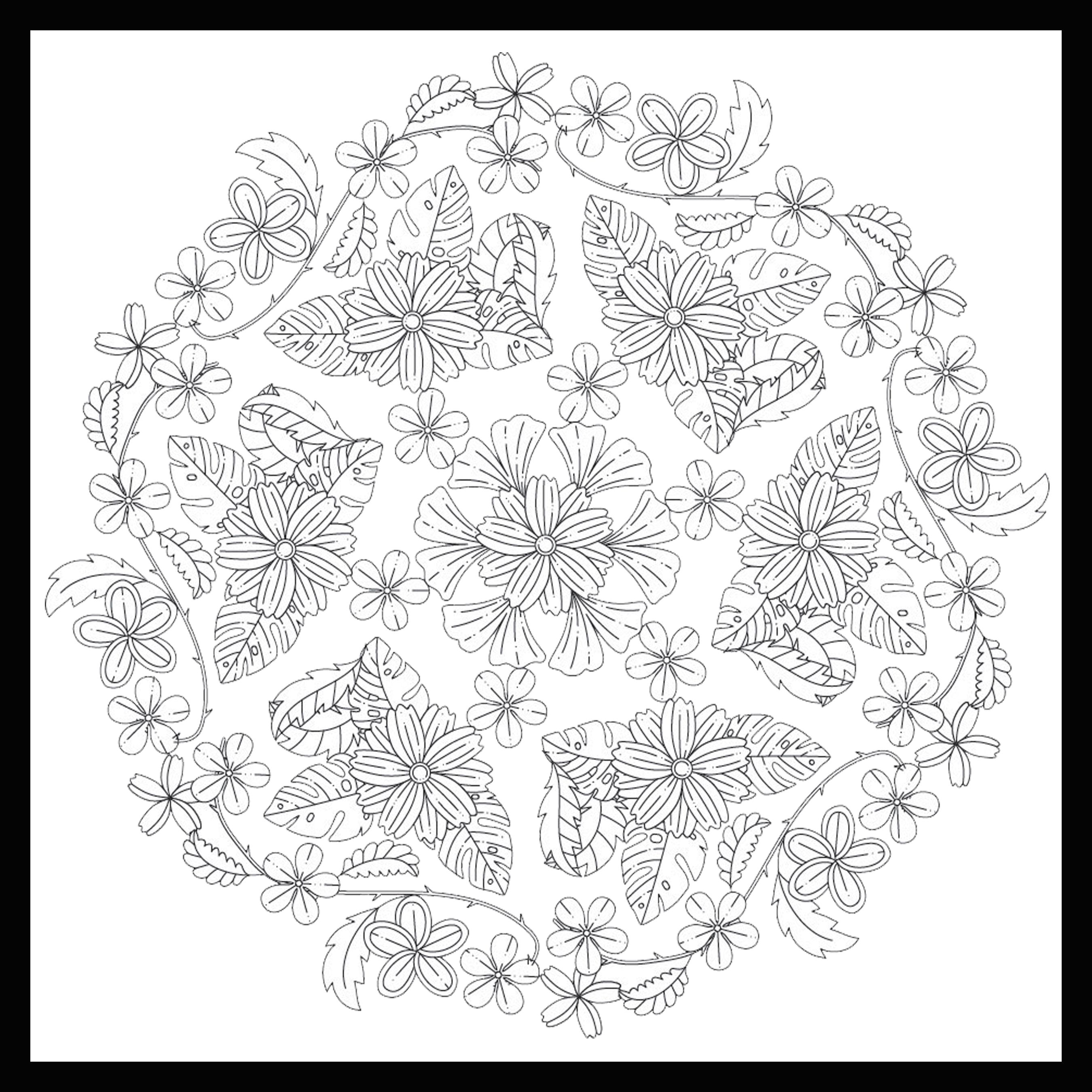 A coloring page from Color2Relax's soon to be released new ...