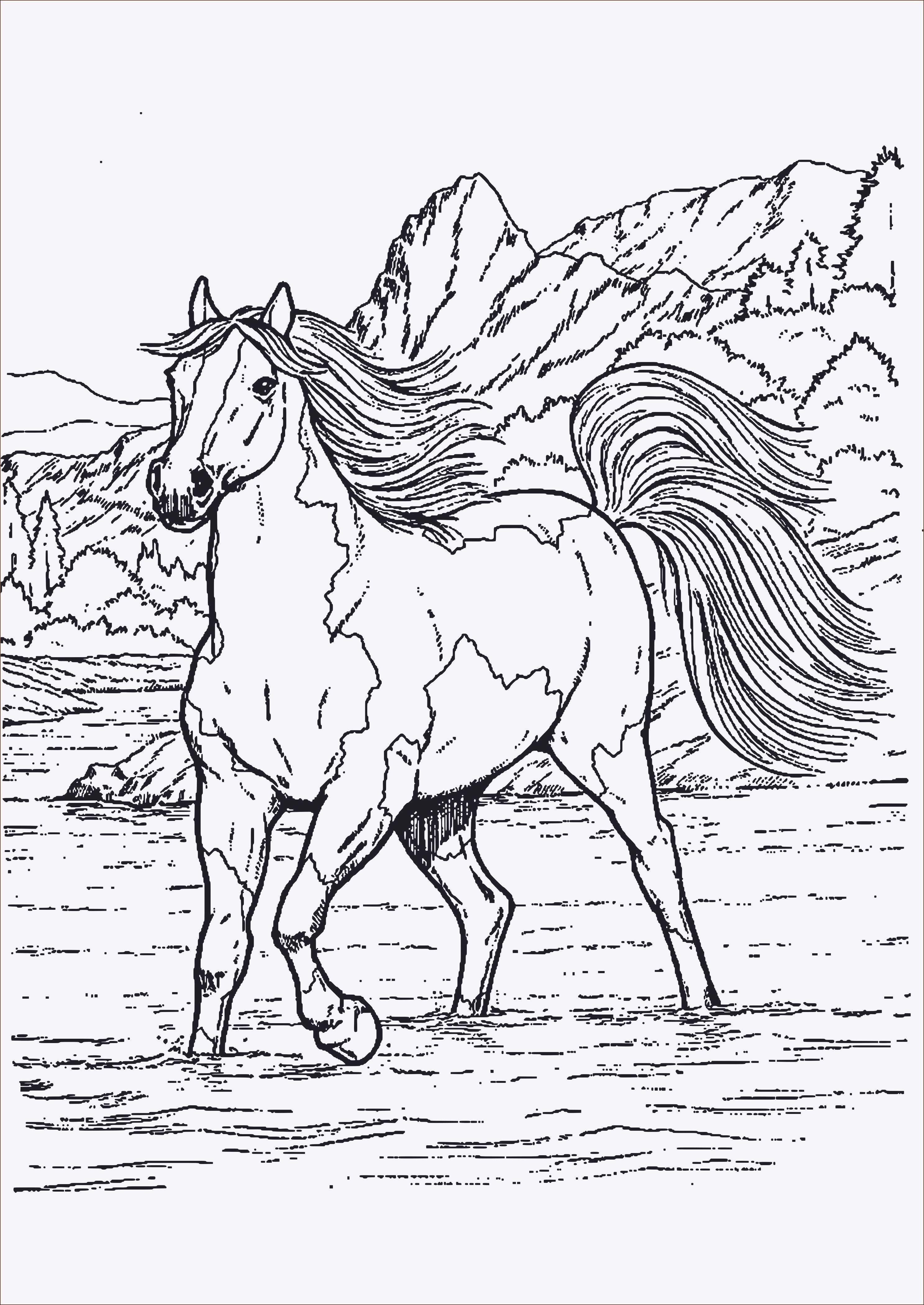 Unique Ausmalbild Pferd Mit Fohlen #Färbung #Malvorlagen
