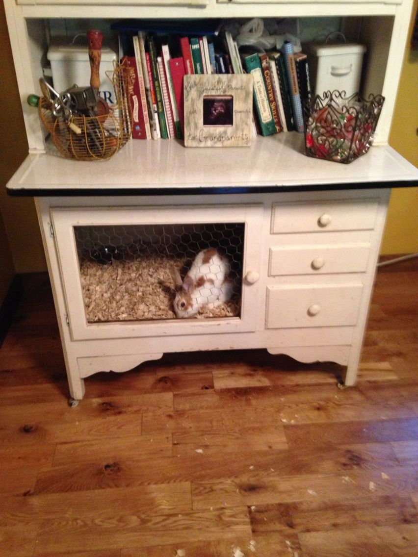Rabbit Cage From Cabinets