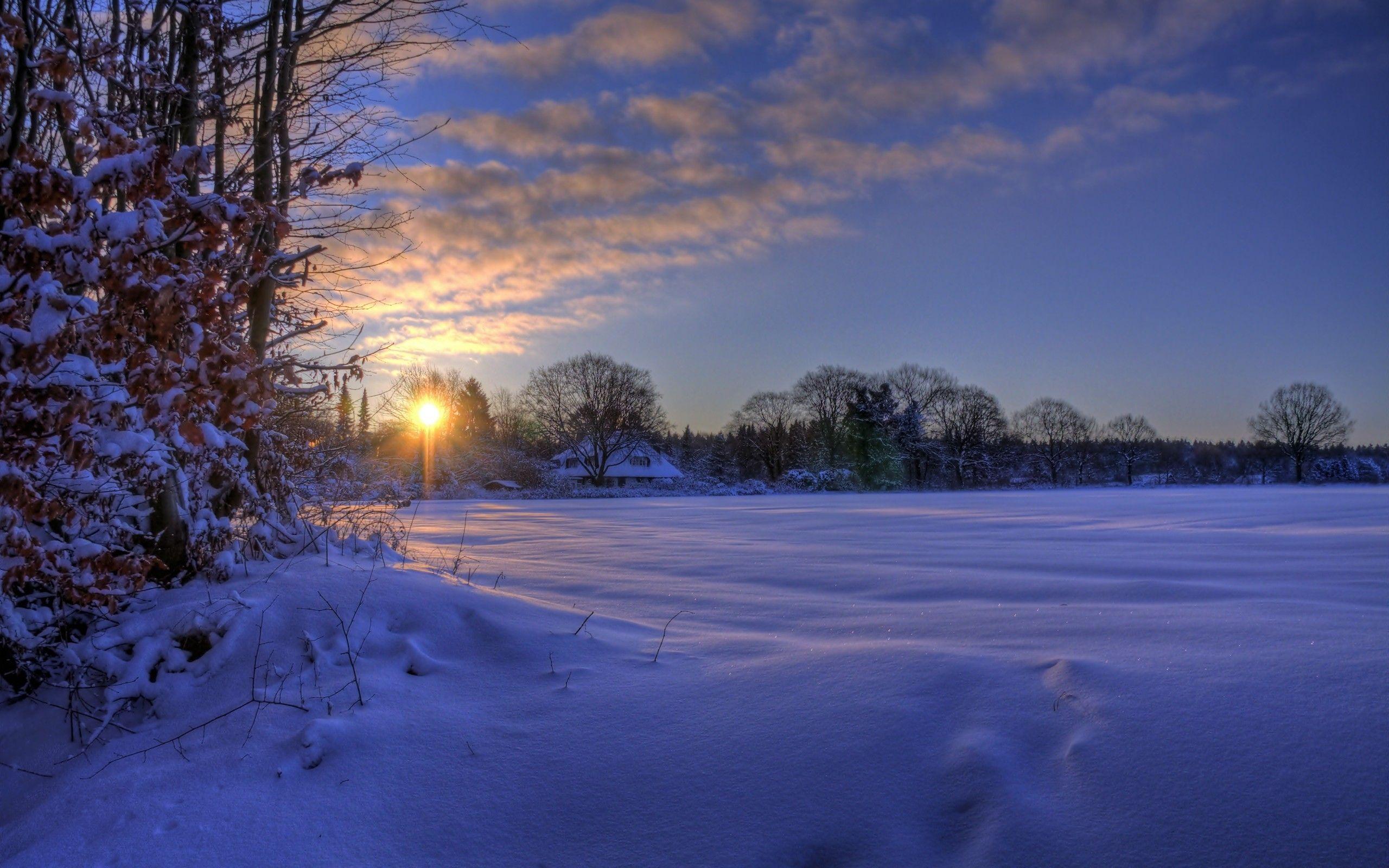 Paysages de neige en hiver nature hiver pinterest for Fond ecran gratuit pour ordinateur hiver