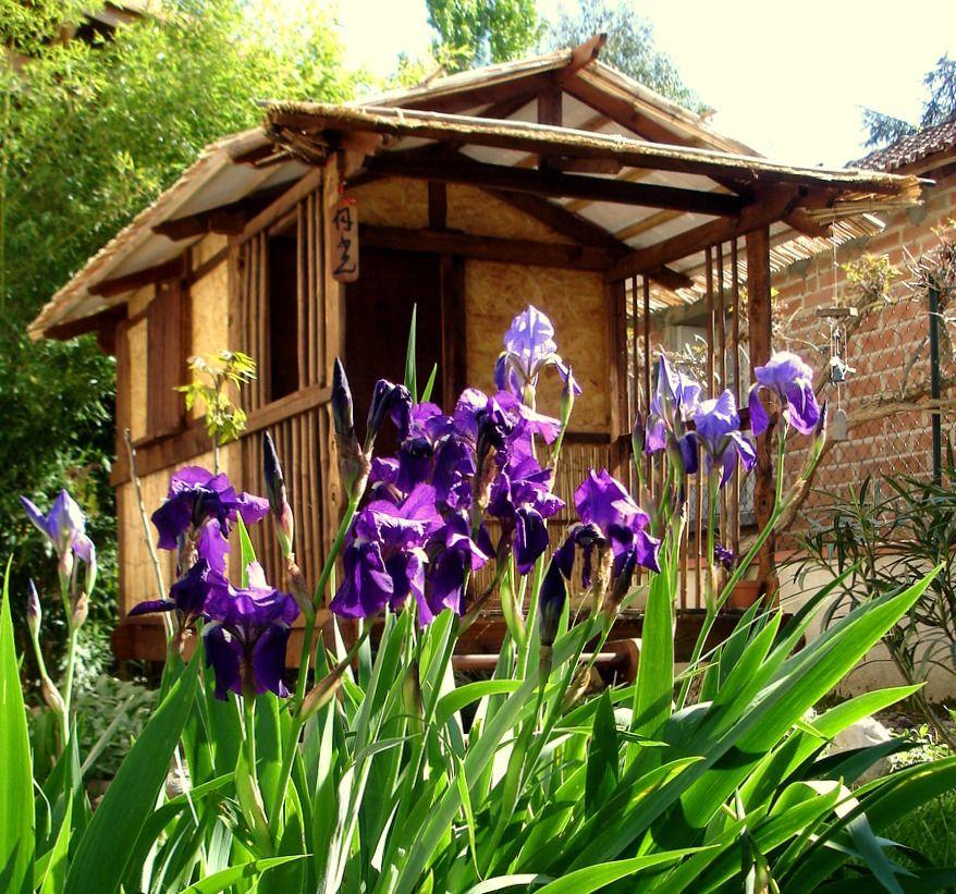une nouvelle cr ation de la cabane au fond du jardin la cabane japonaise traditionnelle clair de. Black Bedroom Furniture Sets. Home Design Ideas