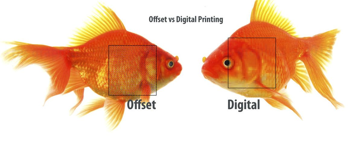 Digital Vs Offset Printing  Consistently high image quality