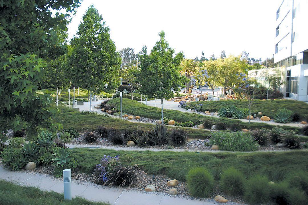 beautiful landscape california