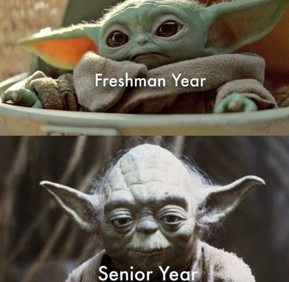 Baby Yoda Memes Explained Star Wars Yoda Funny Funny Babies Funny Images