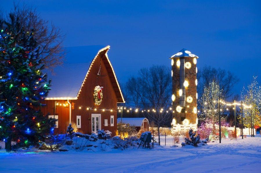 d52ea6ccb8fa9cc6f58bd86e2478a42c - Denver Botanic Gardens Christmas Lights Chatfield