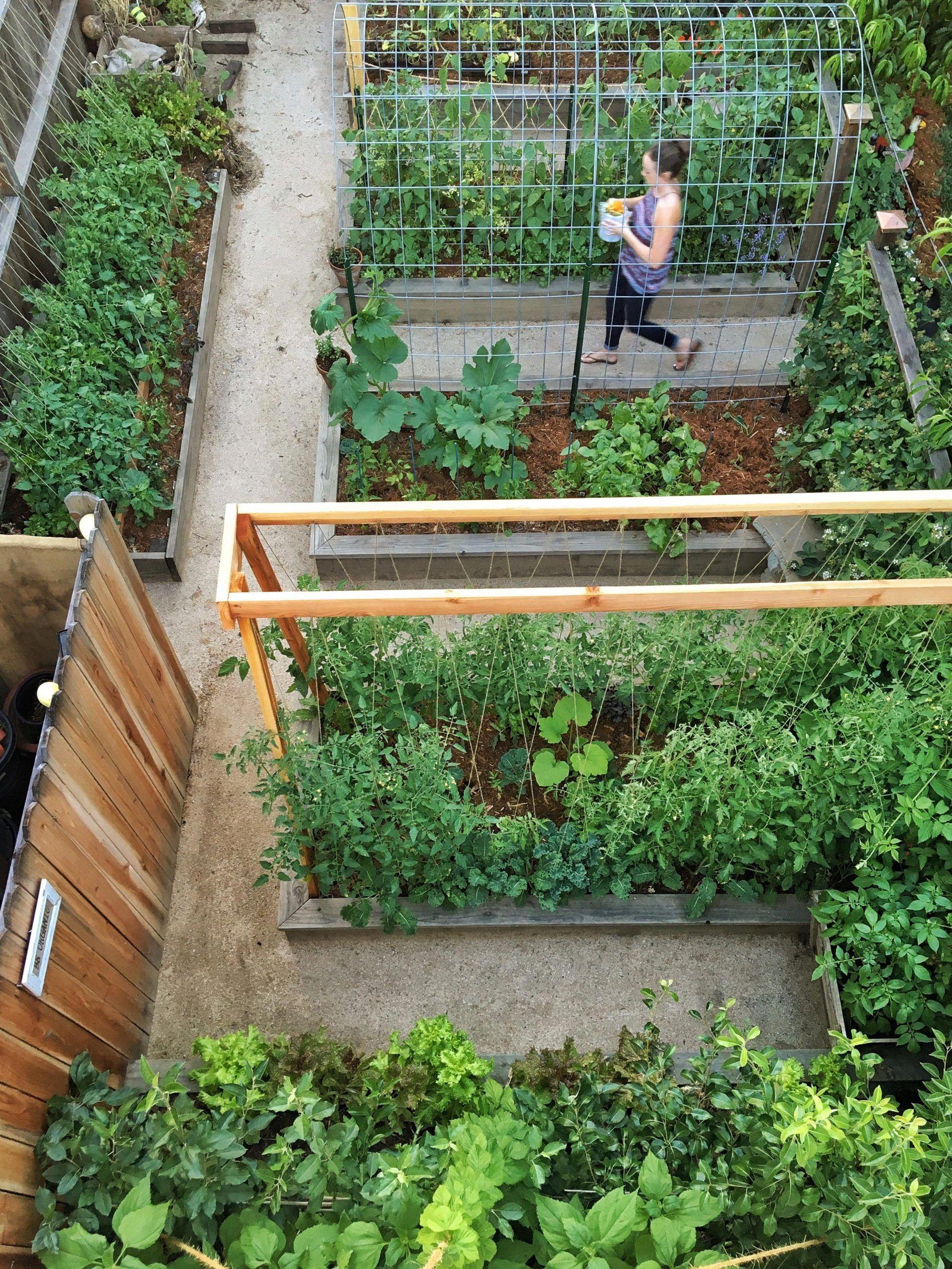 01 Beautiful Small Cottage Garden Ideas For Backyard Inspiration Frontbackhome Wel Vegetable Garden Design Backyard Vegetable Gardens Growing Vegetables Urban backyard farming ideas