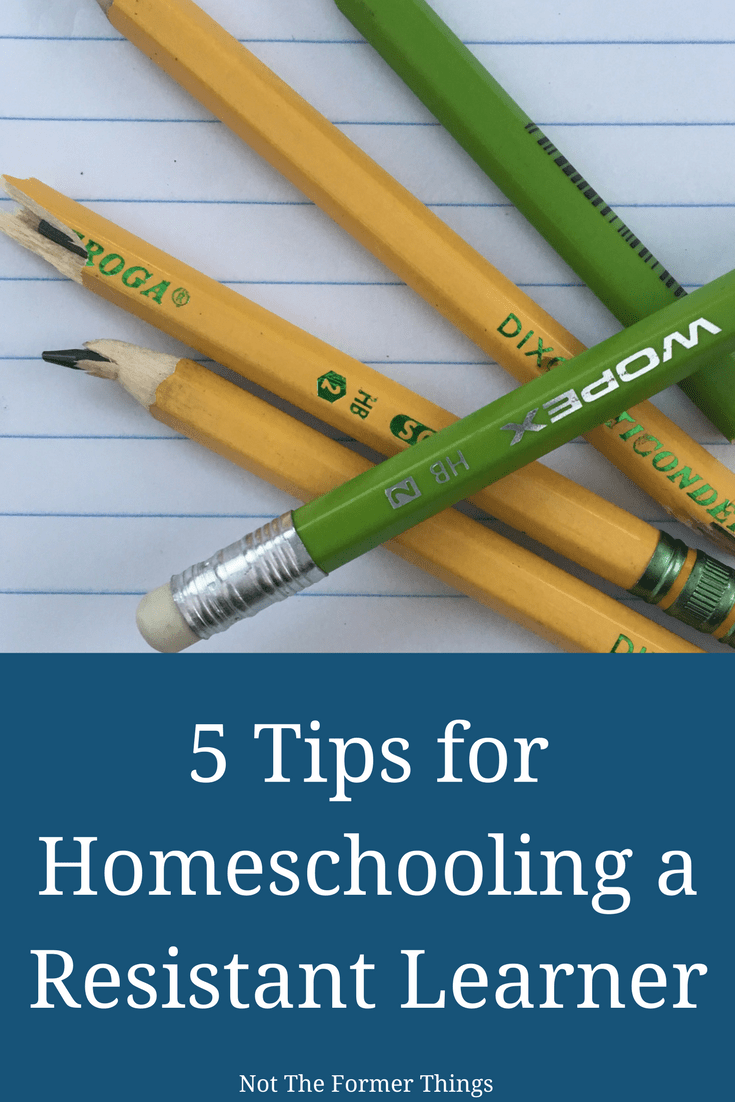 5 Tips For Homeschooling A Resistant Learner