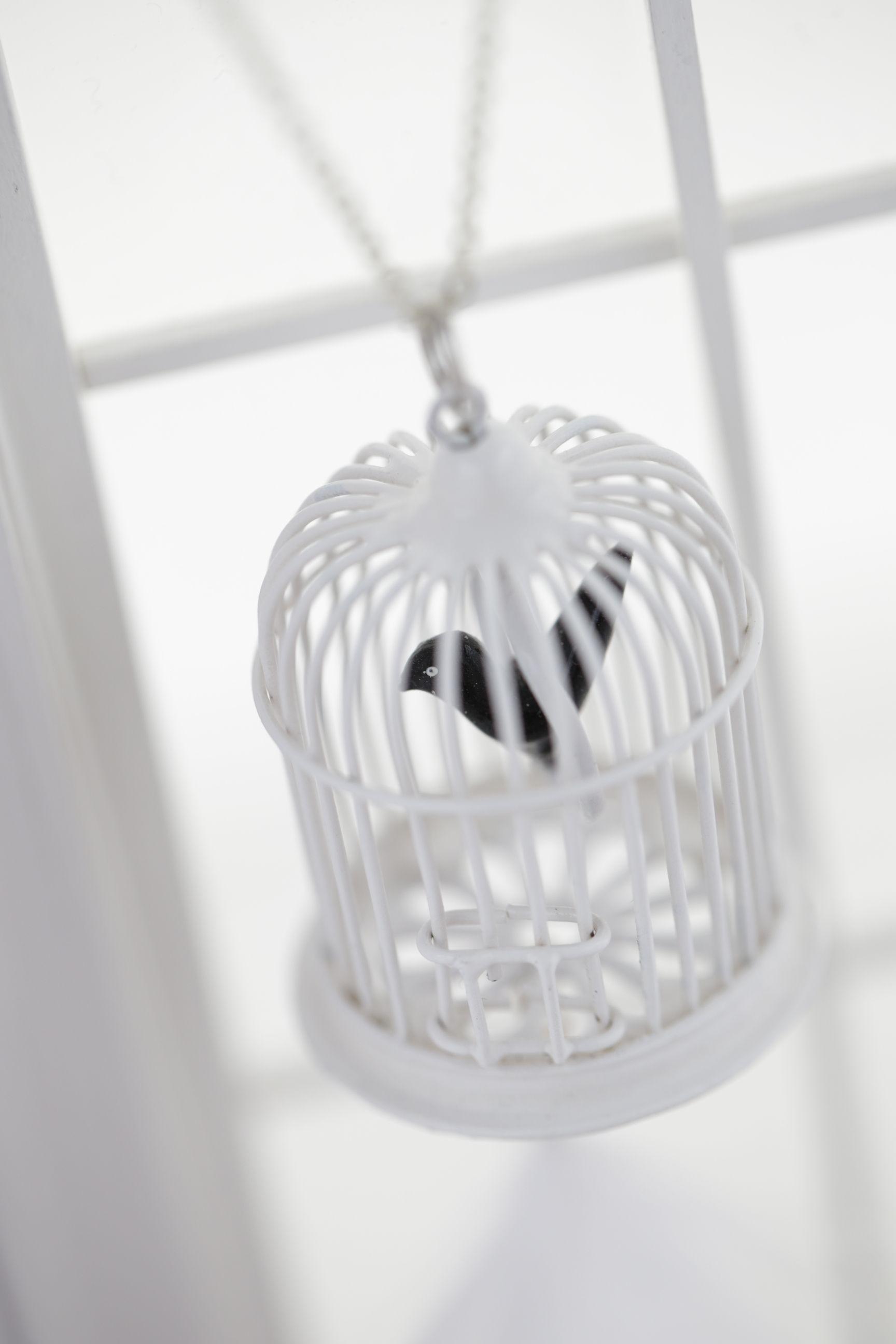 #birdcage...