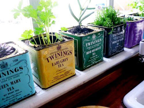 Elegant These Quaint Little Metal Twinings Vintage Tea Tins Have Been Reused As  Small Herb Pots.