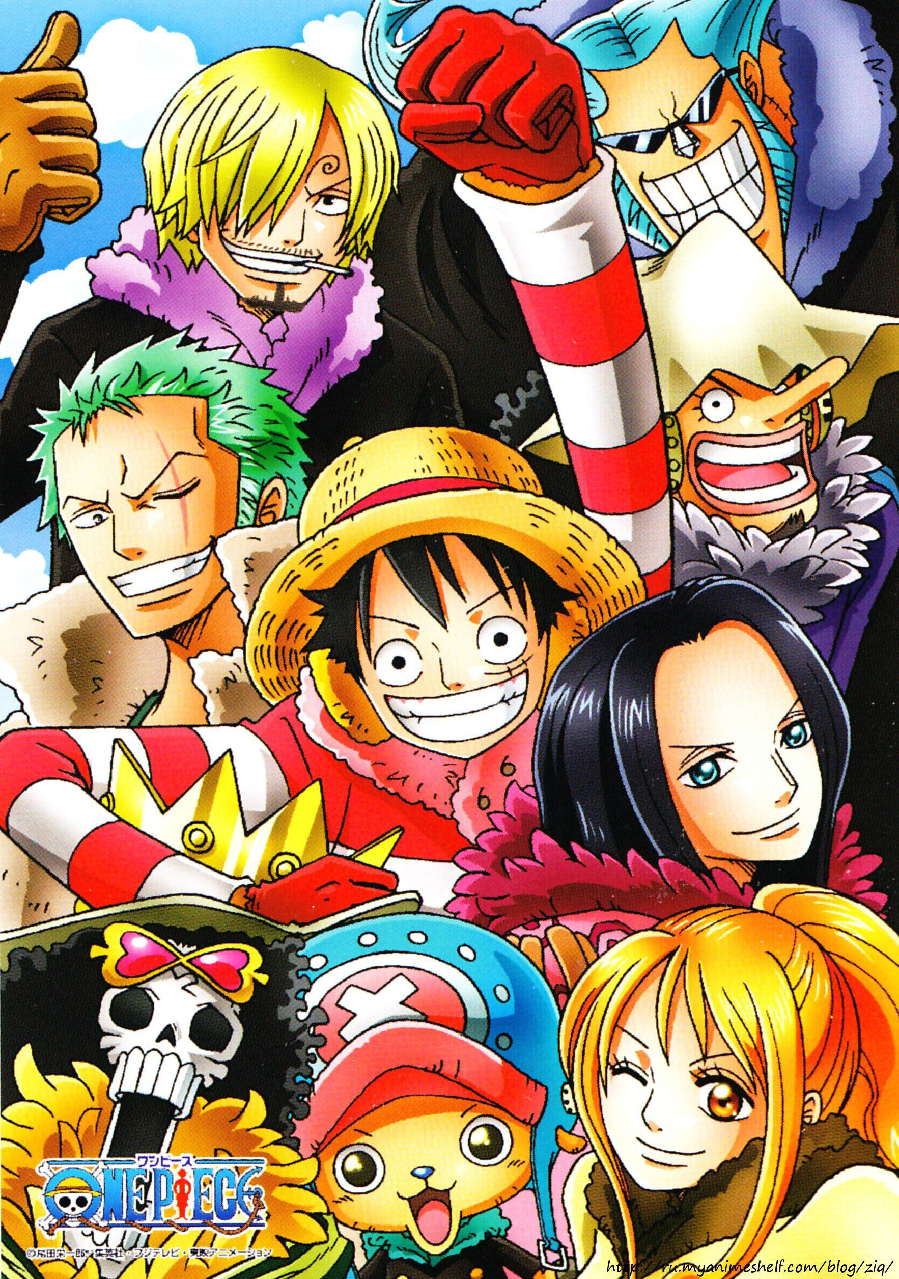 One Piece Two Years Later, COLD (With images) One piece