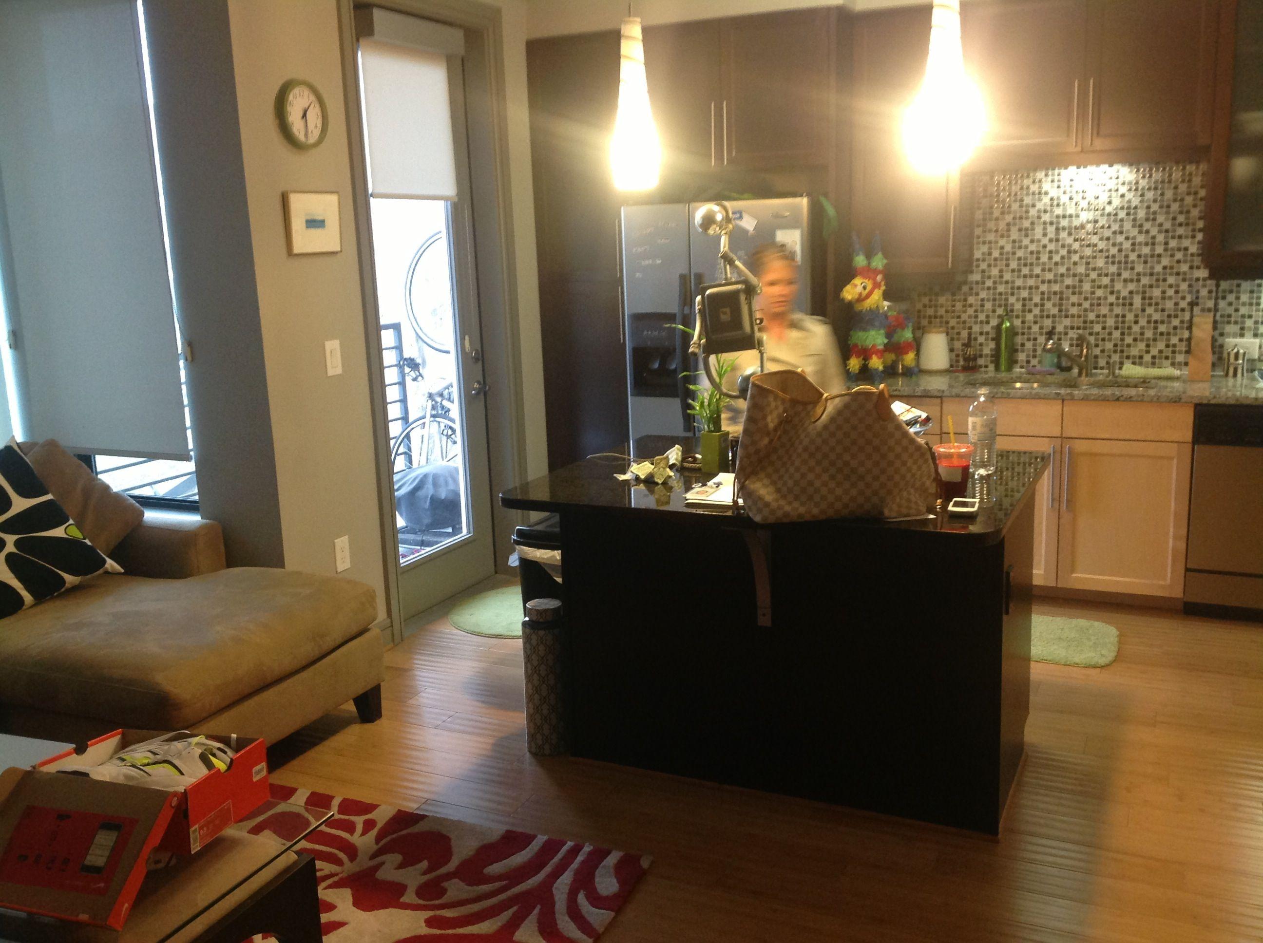 Kitchen Inside 500 Sq Ft Apartment