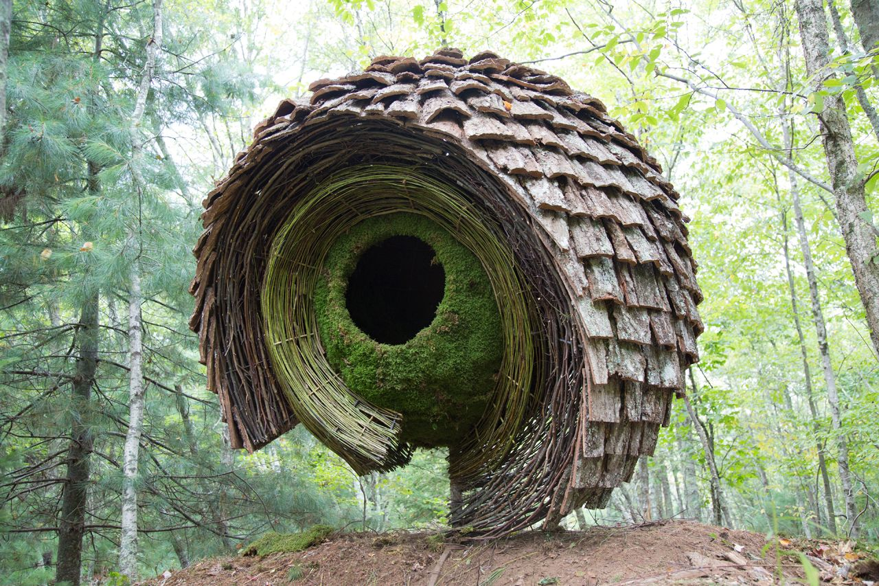 environmental art - Google Search | ECOLOGICAL ART | Pinterest ...