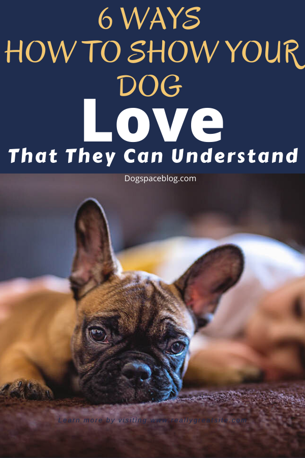 Dogs that are treated properly have the best temperaments and they hold no reservations in showing the love they have received. 6 WAYS TO SHOW YOUR DOG LOVE THAT THEY CAN UNDERSTAND #dogs #doglovers #happydog #doglovers #dog