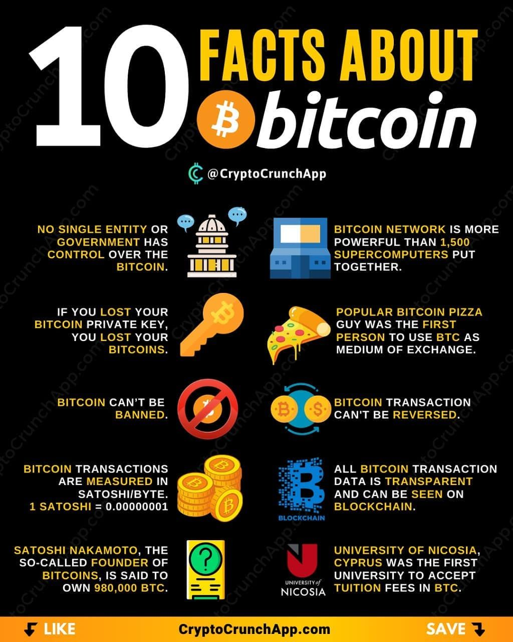 which is a better investment bitcoin or litecoin easiest crypto application to make money for beginners