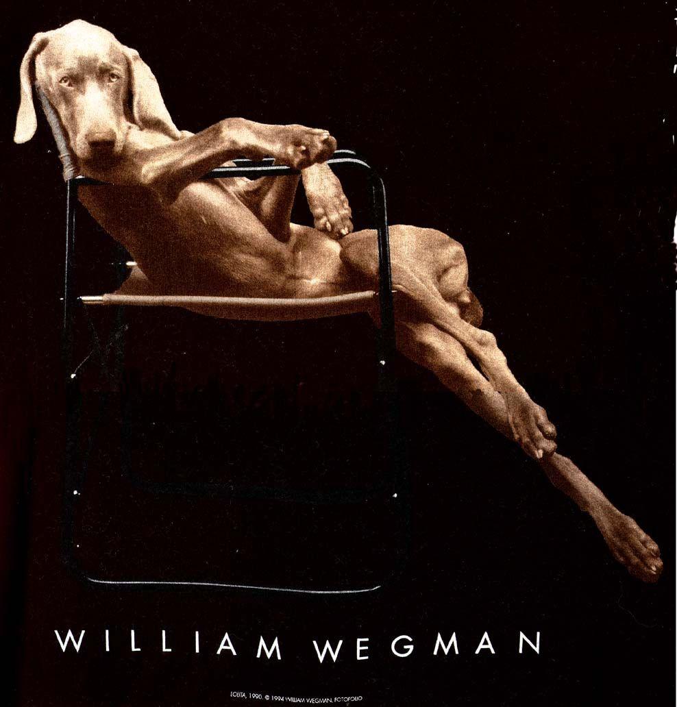 william wegman A new book of william wegman's photographs not only highlights his most beloved weimaraner images, but also portraits that seem otherworldly.