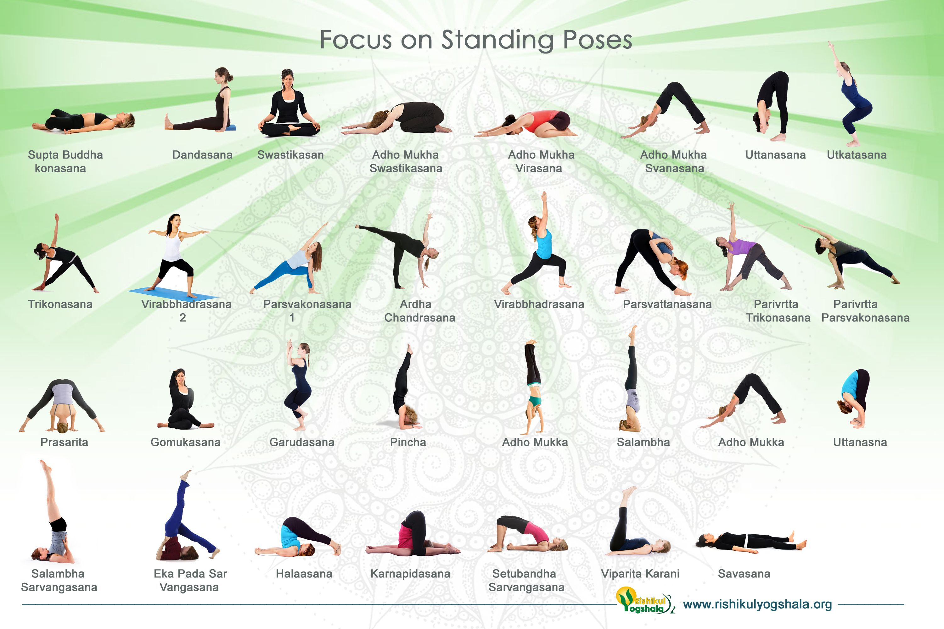 Standing Yoga Poses For Beginners Visual Ly Basic Yoga
