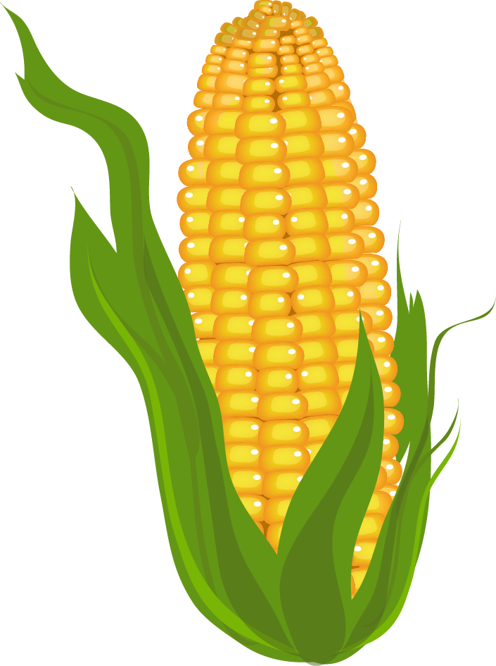 corn clipart prints pictures and more pinterest rh pinterest com Pineapple Clip Art Cantaloupe Clip Art