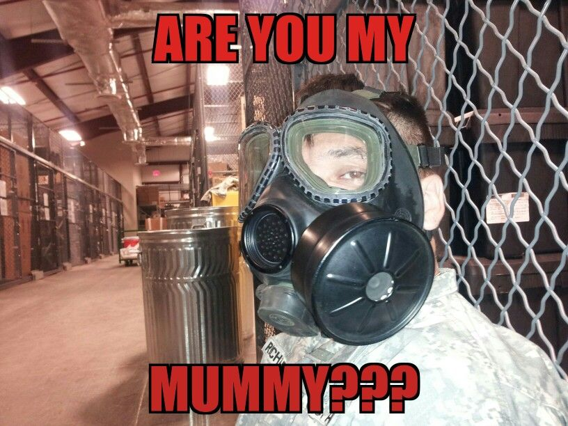 Are you my Mummy??? Only a few can appreciate this!