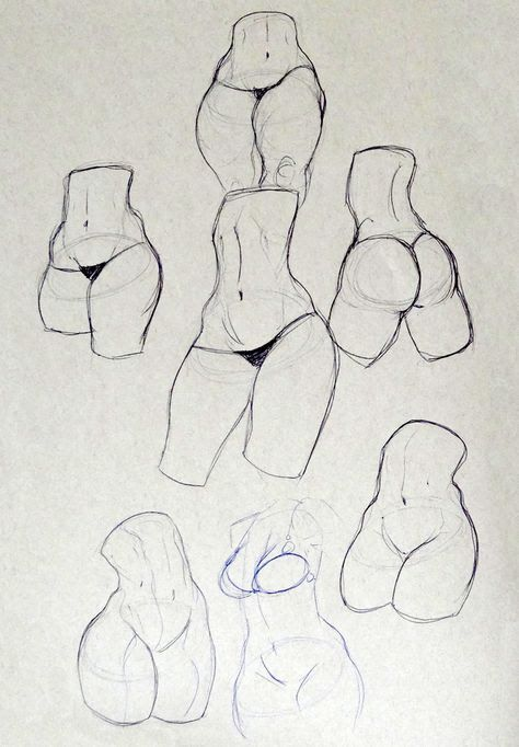 Womens Anatomy Art Pinterest Drawings Art And Sketches