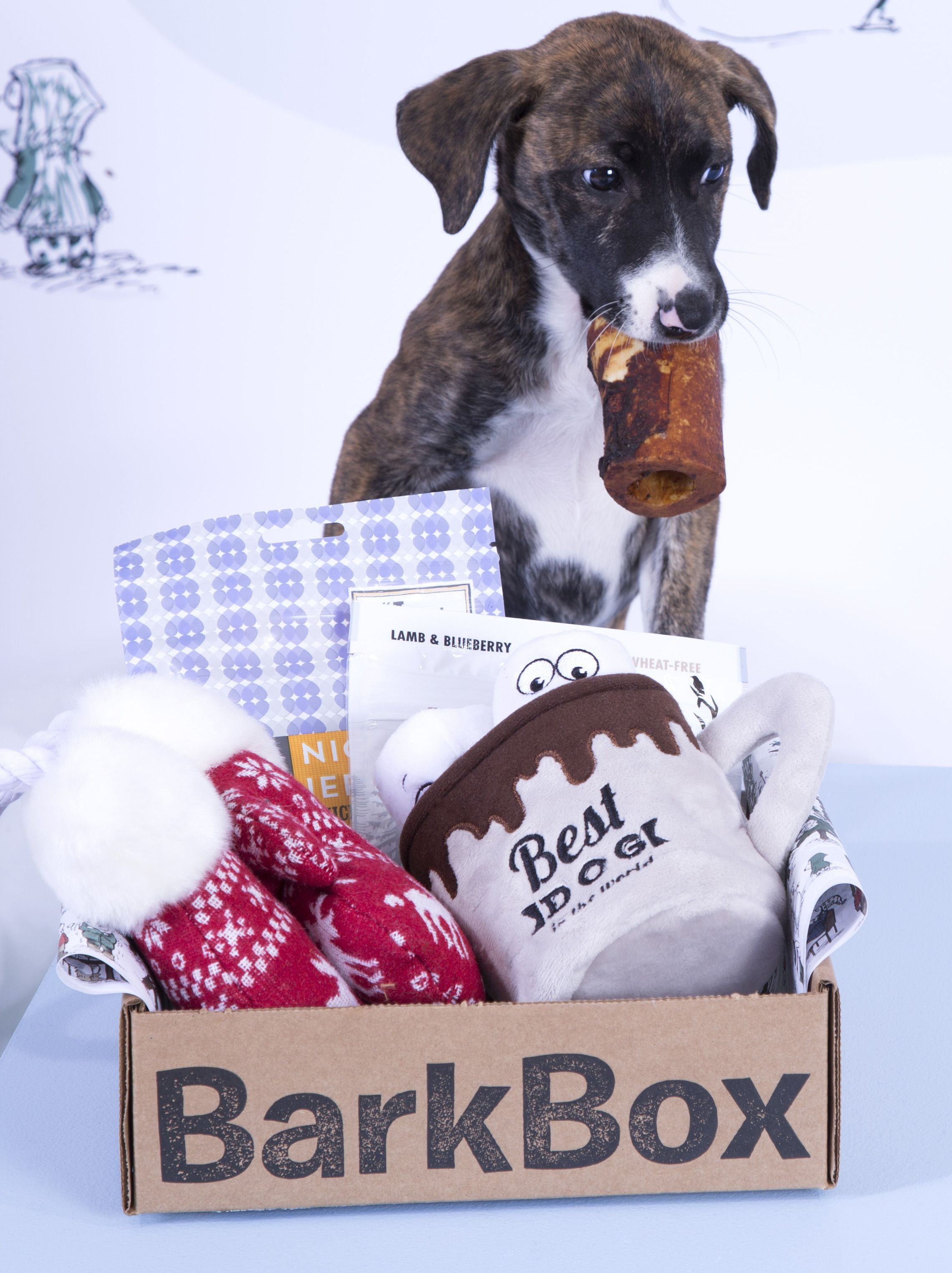 Barkbox Is A Monthly Themed Box Of Toys Treats And Crazy Dog Joy