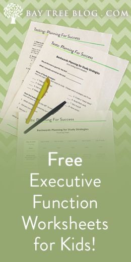 Strengthening Executive Function >> Free Download The Strengthening Executive Function Workbook