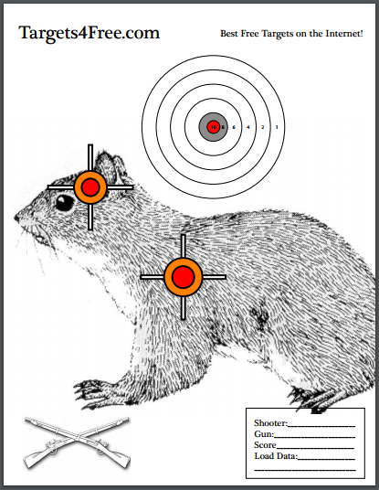 picture regarding Printable Squirrel Target identified as Pin upon No cost Printable On the lookout Objectives