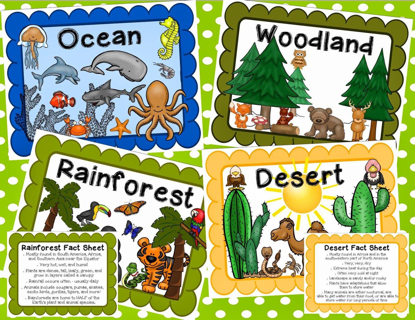 Animal Classification And Habitats Unit