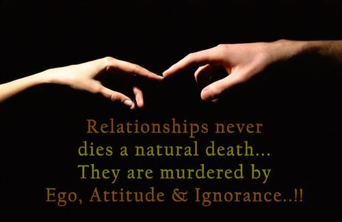 Beautiful Relationship High Definition Quotes Photo
