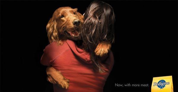 Irish Setter Pedigree Dry Dog Food Pedigree Print Outdoor Ads