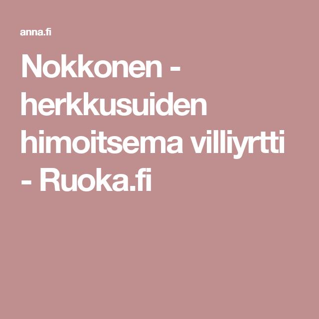 Nokkonen - herkkusuiden himoitsema villiyrtti - Ruoka.fi