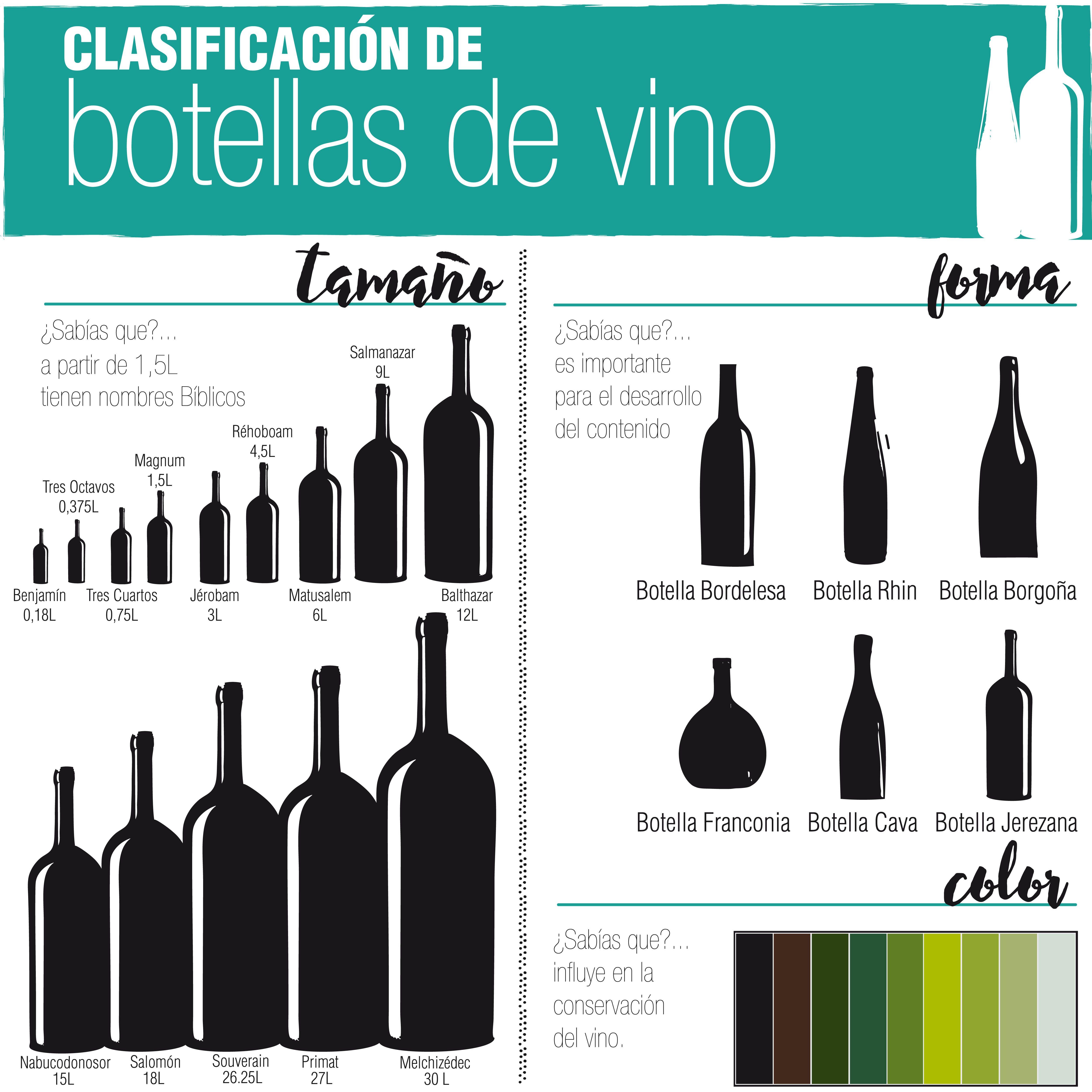 Para Winelovers Infografia Sobre Los Tipos De Botellas De Vino
