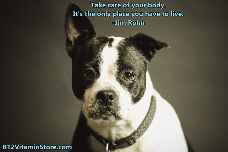 Take care of your body! Puppy training, Puppy biting