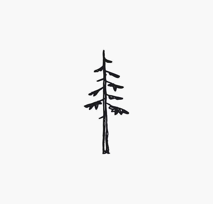 Minimalist Pine Tree: Pin By Paige Adams On Keep It Simple