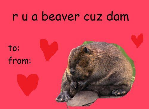 Accio Coffee Funny Valentines Cards Bad Valentines Cards Valentines Day Memes