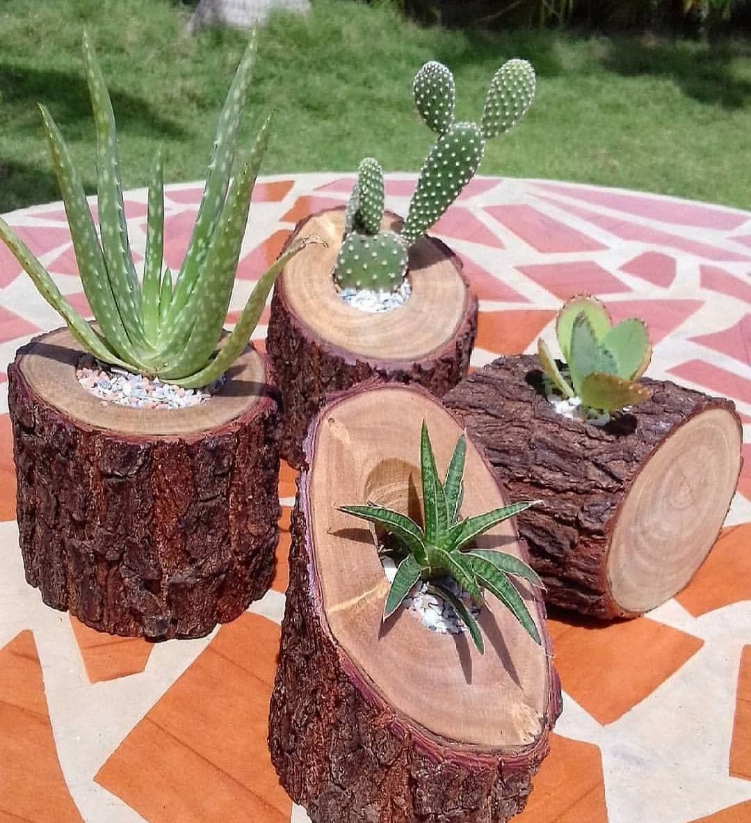 Pin by drj on jardins in pinterest succulents garden and
