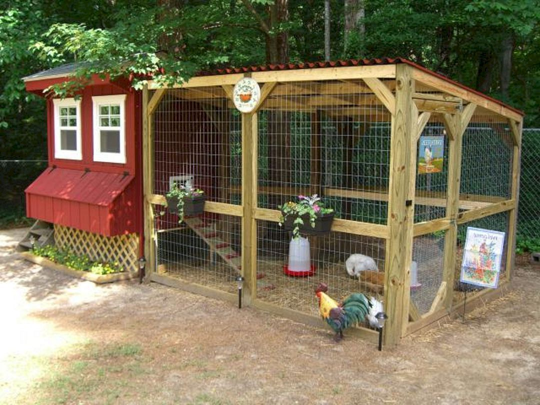 The Best Creative And Easy DIY Chicken Coops You Need In