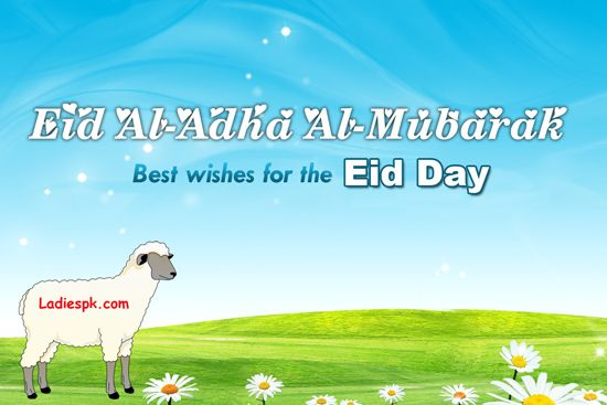 Eid Ul Adha Mubarak Wallpaper Card Wishes And Greetings Latest