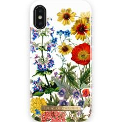 Photo of iPhone X/XS Cases