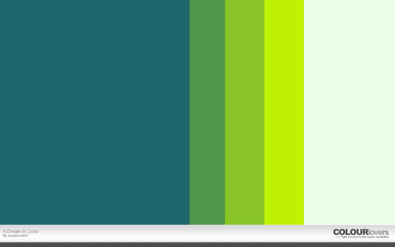 20 Bold Color Palettes