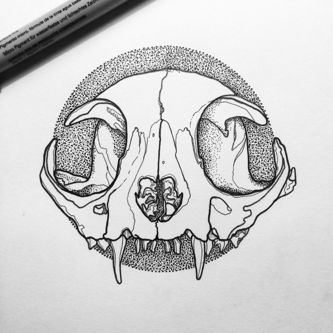 Cat Skull Line Linework Design Designer Graphic Graphics Graphicdesign Sketch Draw Drawing Illustrate Illustr Cat Skull Tattoo Cat Skull Skull Art