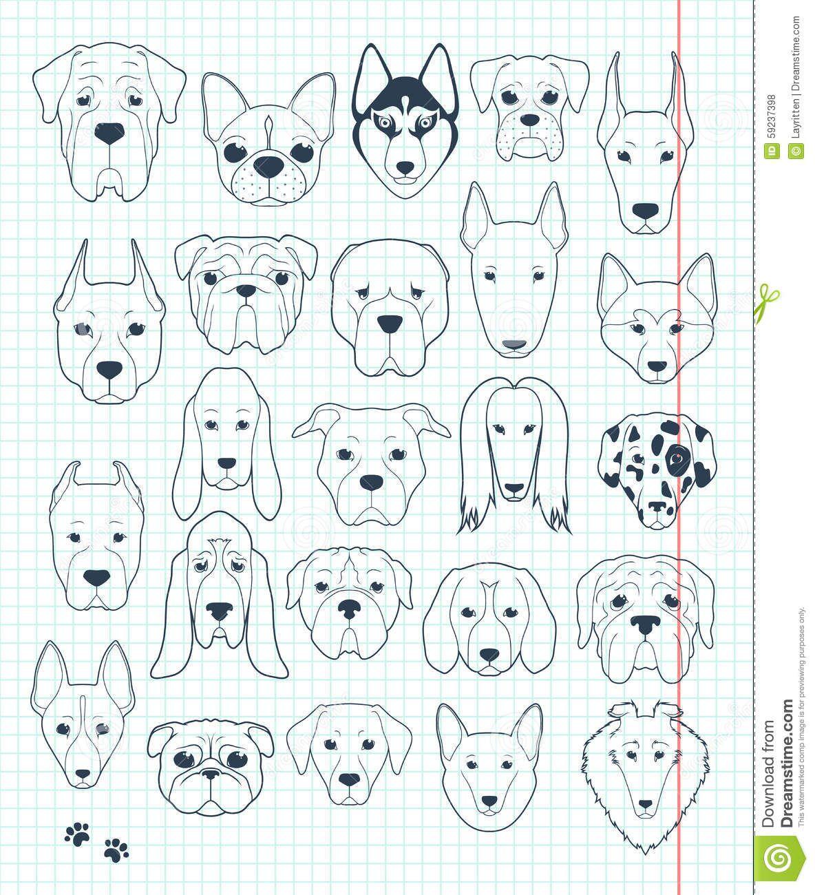 Set Of Sketches 24 Dogs Different Breeds Handmade Head Dog Illustration About Graphic Dachshund Basenji Labrador Al Animal Doodles Doodle Dog Dog Tattoos