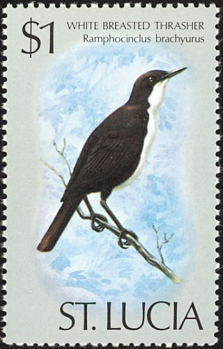 White-breasted Thrasher stamps - mainly images - gallery format