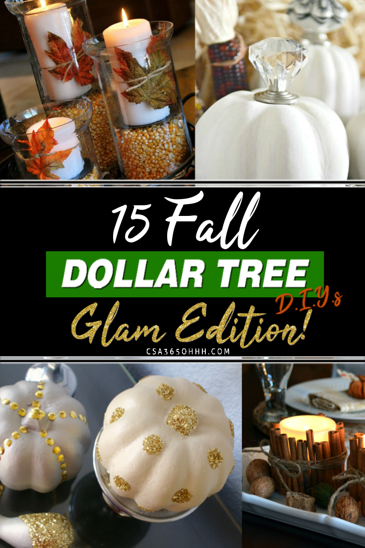 15 GLAM Dollar Tree D.I.Y's that I know you will love! #DollarTree #DollarTreeHacks #DollarTreeFinds #DollarTreeDIY #diyfalldecor