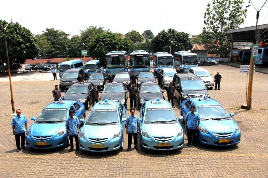 We are provide regular taxi (Blue Bird), Executive Taxi