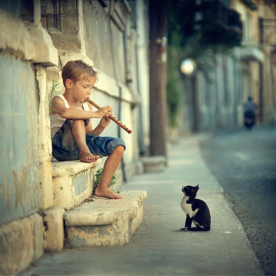 C'mon Play Moorka Photograph by Vladimir Zotov