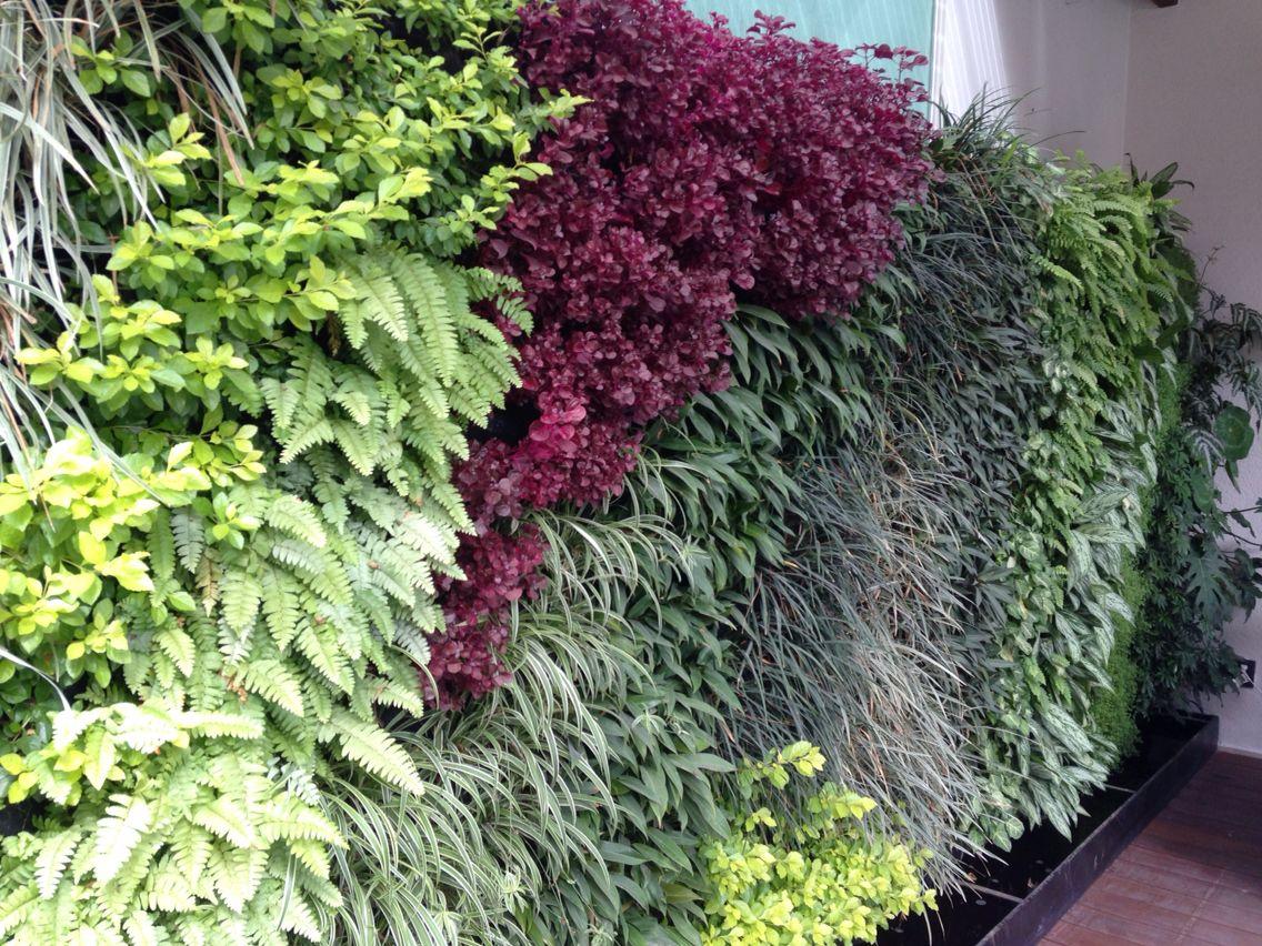 Muro verde jardin vertical paisajismo pinterest gardens - Jardin vertical en casa ...