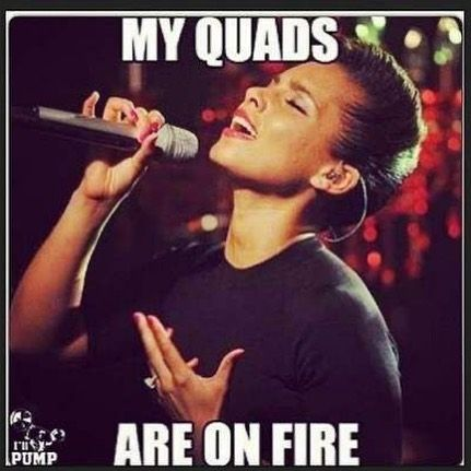Well today I began an actual gym workout plan, yes I am still doing my workouts at home, but am not...