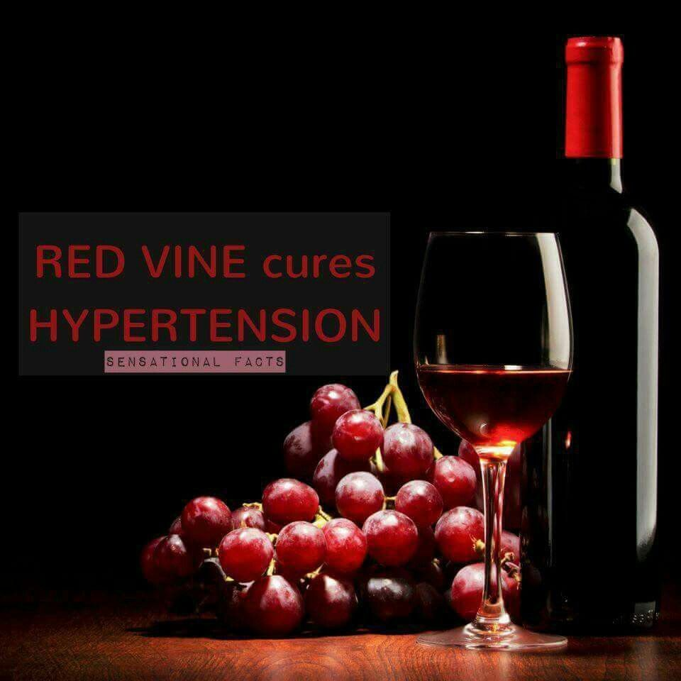 Pin By Anita Khan On Knowledge Portal Alcohol Benefits Wine And Dine