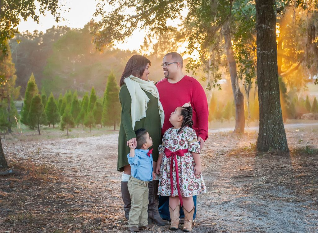 Holiday Photography Christmas Tree Forest Christmas Portraits Holiday Photography